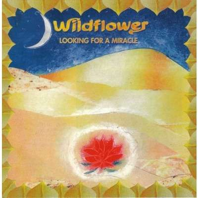 wildflower looking for a miracle