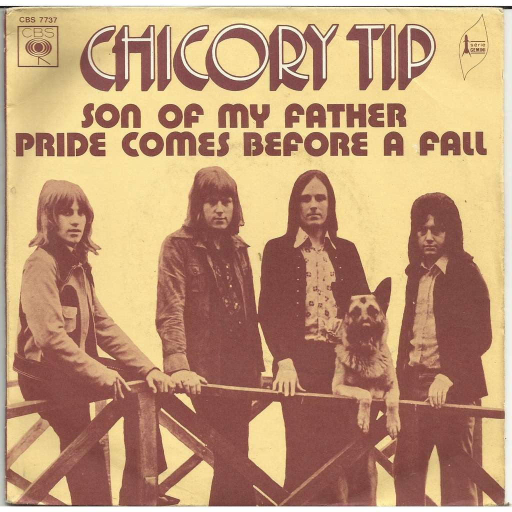 CHICORY TIP Son of my father-Pride comes before a fall