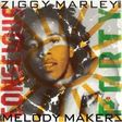 ziggy marley and the melody makers conscious party