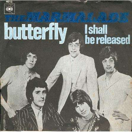 marmalade the butterfly / I shall be released