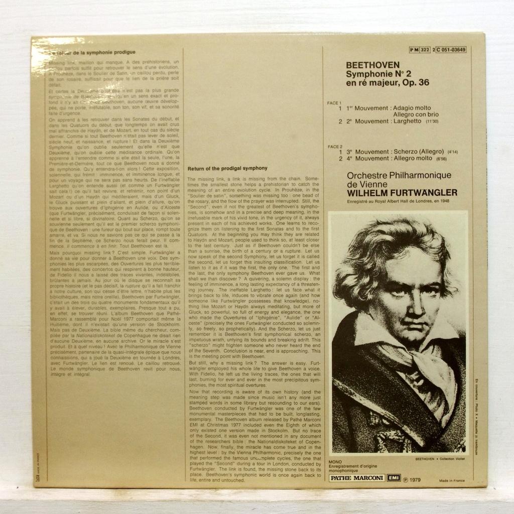 essay concerning beethoven symphony no