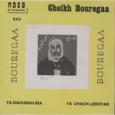 cheikh bouregaa