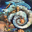 MOODY BLUES (The) - A question of balance (French press) - 33T Gatefold