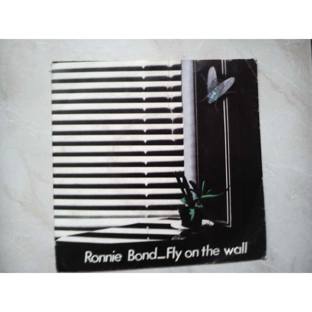 ronnie bond fly on the wall