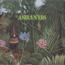 ASHANTIS - Disco play - 33 1/3 RPM Gatefold