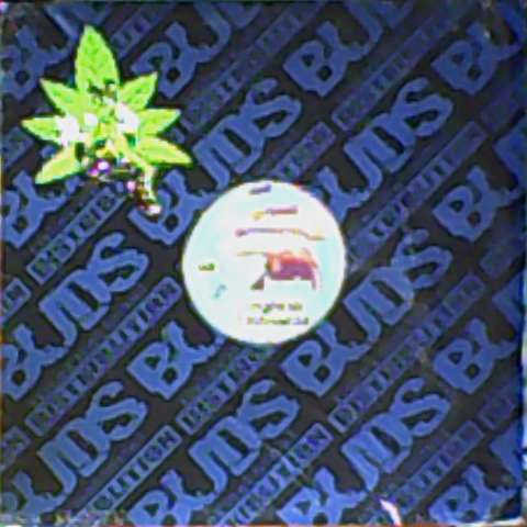 Disc Jockey's Delight Disc Jockey's Delight