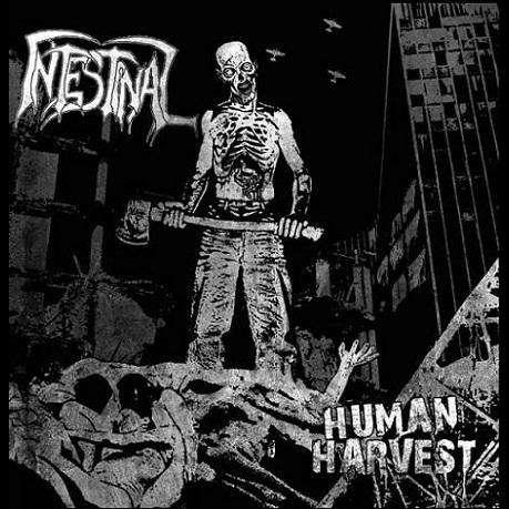 INTESTINAL Human Harvest
