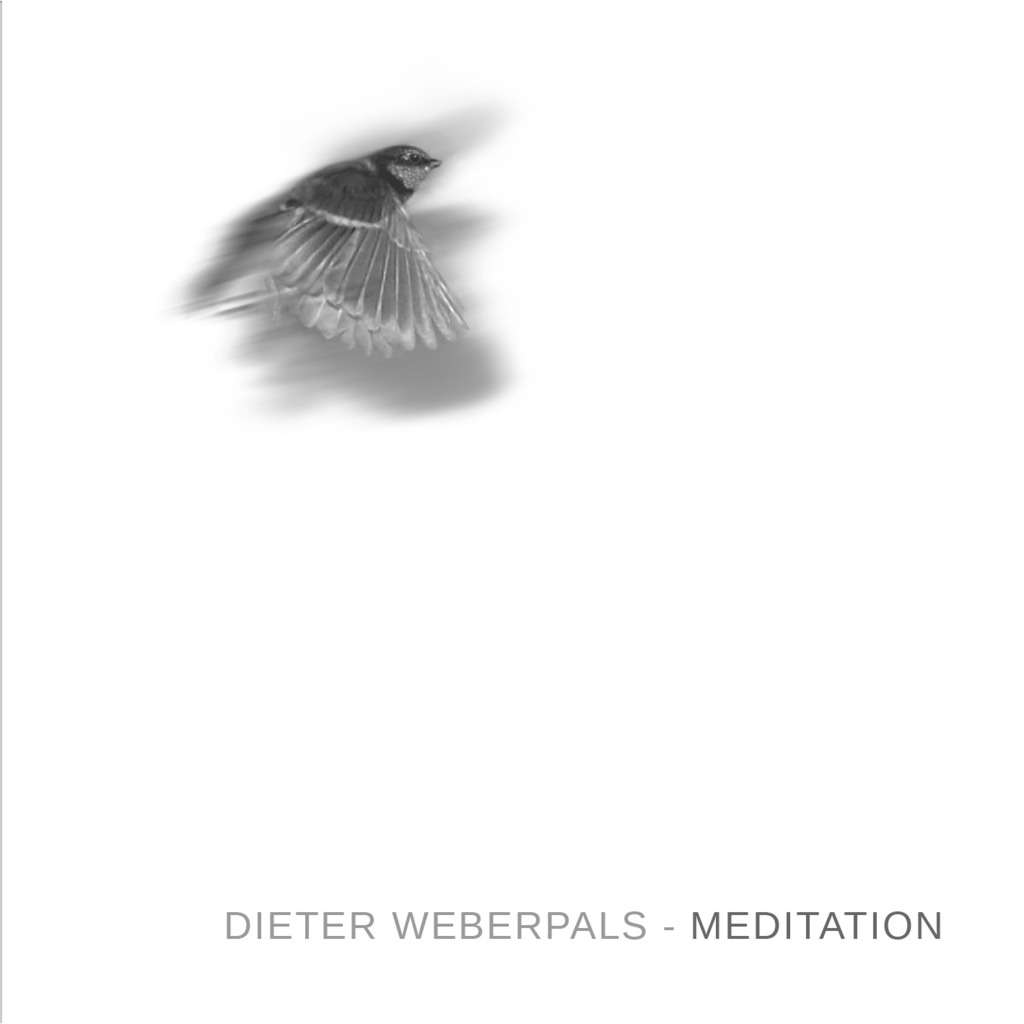 Dieter Weberpals Meditiation