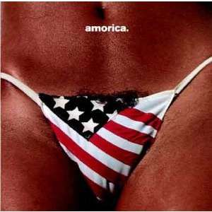 The Black Crowes Amorica.