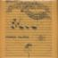 AKTUALA - Tappeto Volante - LP 180-220 gr