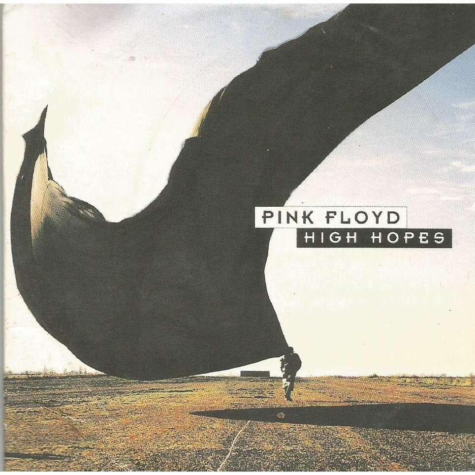 pink floyd high hopes / marrooned