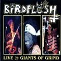 birdflesh live at giants of grind