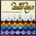 THE BEACH BOYS - That's Why God Made The Radio (lp) - 33T