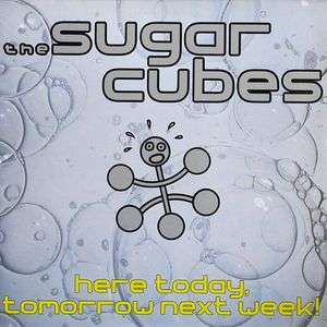 the sugar cubes here today, tomorrow next week !