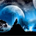 NIGHTWISH ‎ - Live At Gates Of Metal, Folkets Park, Hultsfred, Sweden On The 2nd August 2003 (2xlp) - 33T x 2