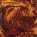 MINDFLAIR - Stagnation (cd) - CD