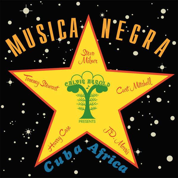 Stevo Musica Negra
