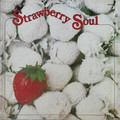 BILLY MARTIN - Strawberry Soul - 33T