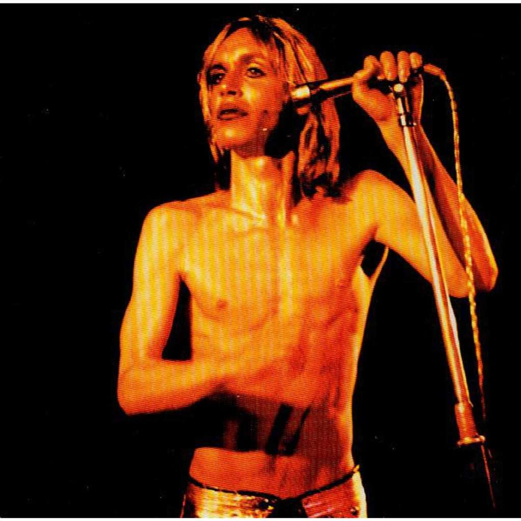 「IGGY POP / STOOGES (IGGY & THE STOOGES) / SEARCH AND DESTROY / PENETRATION」の画像検索結果