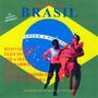 joao gilberto, bola sete, elza soares.... aquarela do brasil