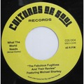THE FABULOUS FUGITIVES - What The World Needs - 45T (SP 2 titres)