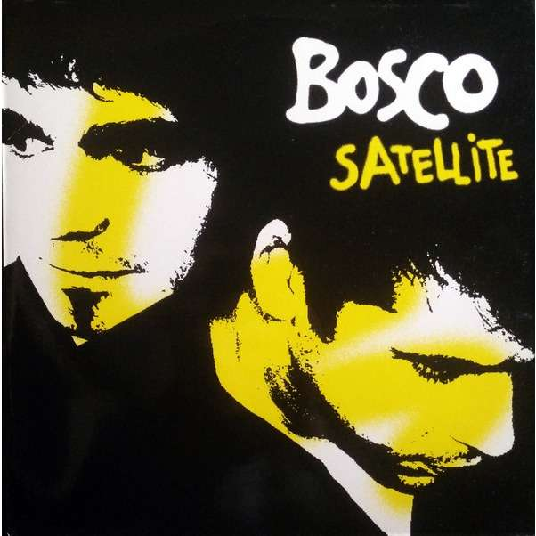 BOSCO satellite