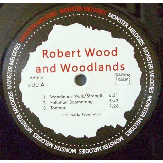 Robert Wood & Woodlands Live At Lons Le Saulnier, 1974