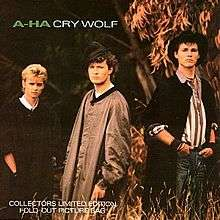 A-HA cry wolf ( collectors limited edition fold out picture bag )