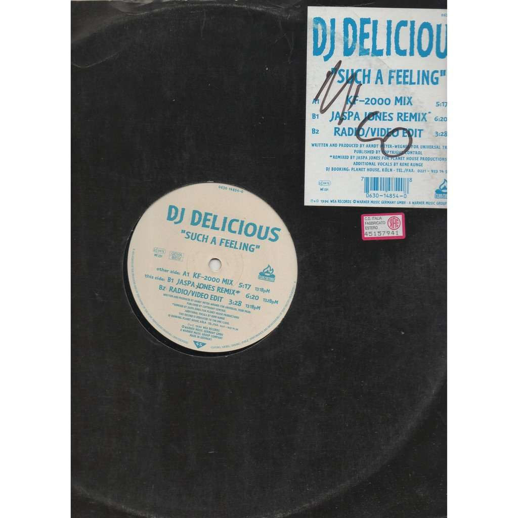 DJ Delicious Such A Feeling