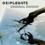 OXIPLEGATZ - Sidereal Journey - CD