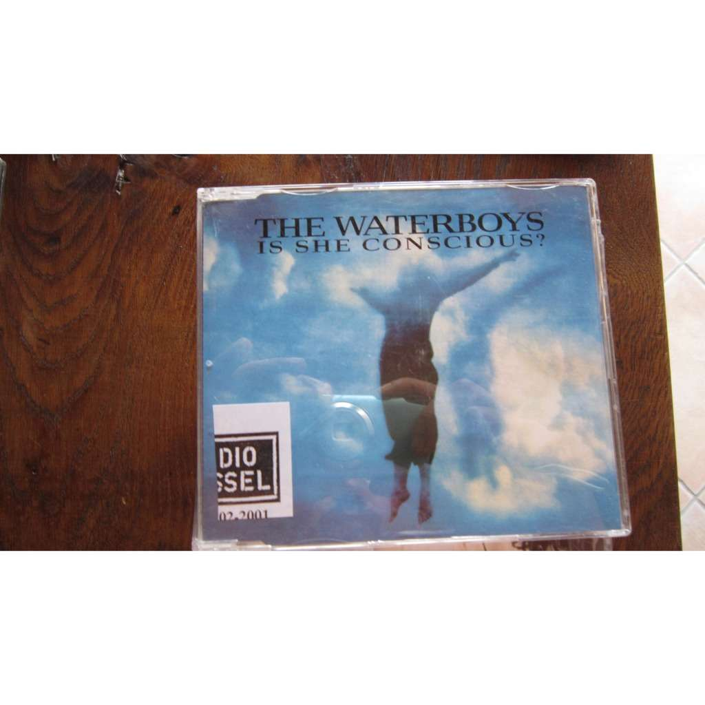 Waterboys, The is she conscious ? (1 Track Promo)