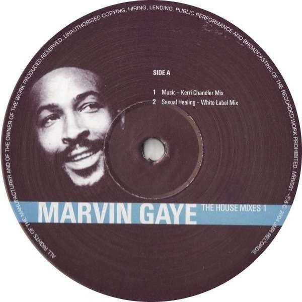 Shaggy ft marvin gaye