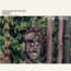 ETHIOPIAN URBAN AND TRIBAL MUSIC (VARIOUS) - Mindanoo Mistiru, gold from wax - 33T x 2