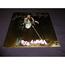 johnny hallyday - Rock a memphis - LP