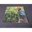 johnny hallyday - A partir de maintenant - LP