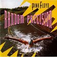 pnk floyd random precision