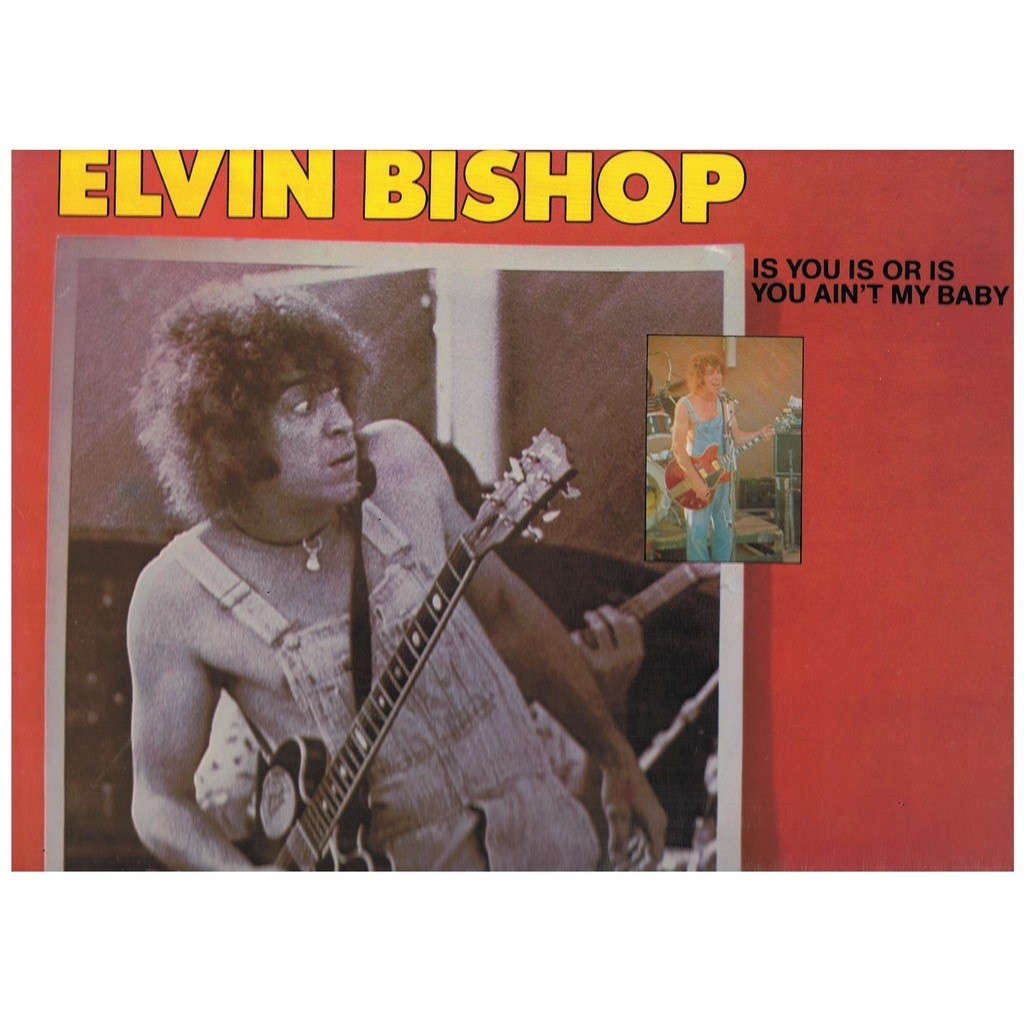 ELVIN BISHOP IS YOU IS OR IS YOU AIN'T MY BABY