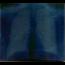 MERCAN DEDE - Nefes - CD