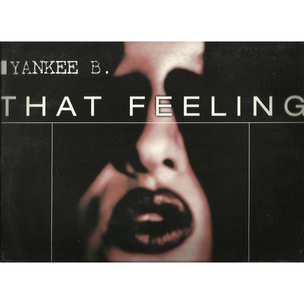 YANKEE B. that feeling - 3mix / hurt somebody - 3mix