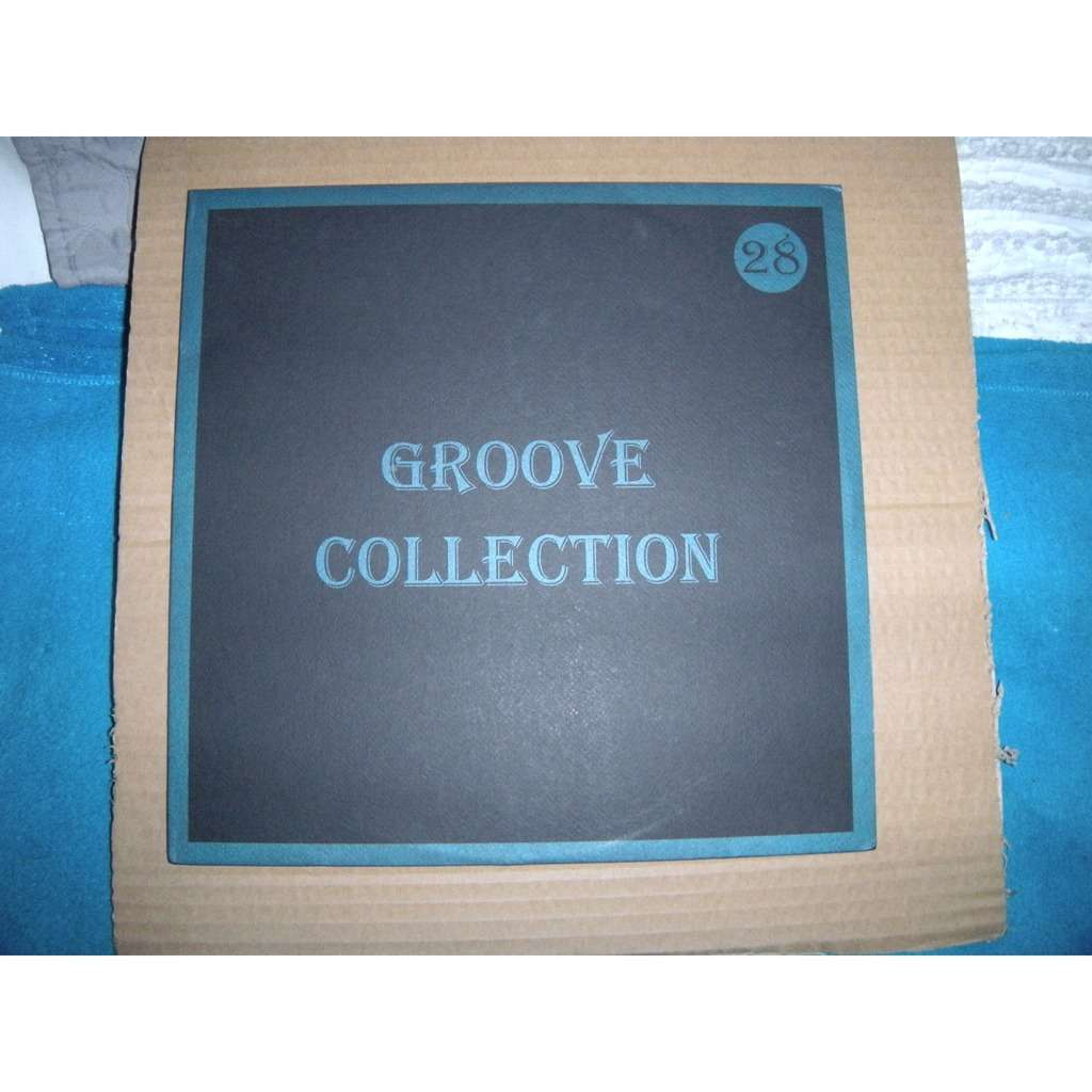 GROOVE COLLECTION NAUGHTY BY NATURE / DRU HILL VOL.28