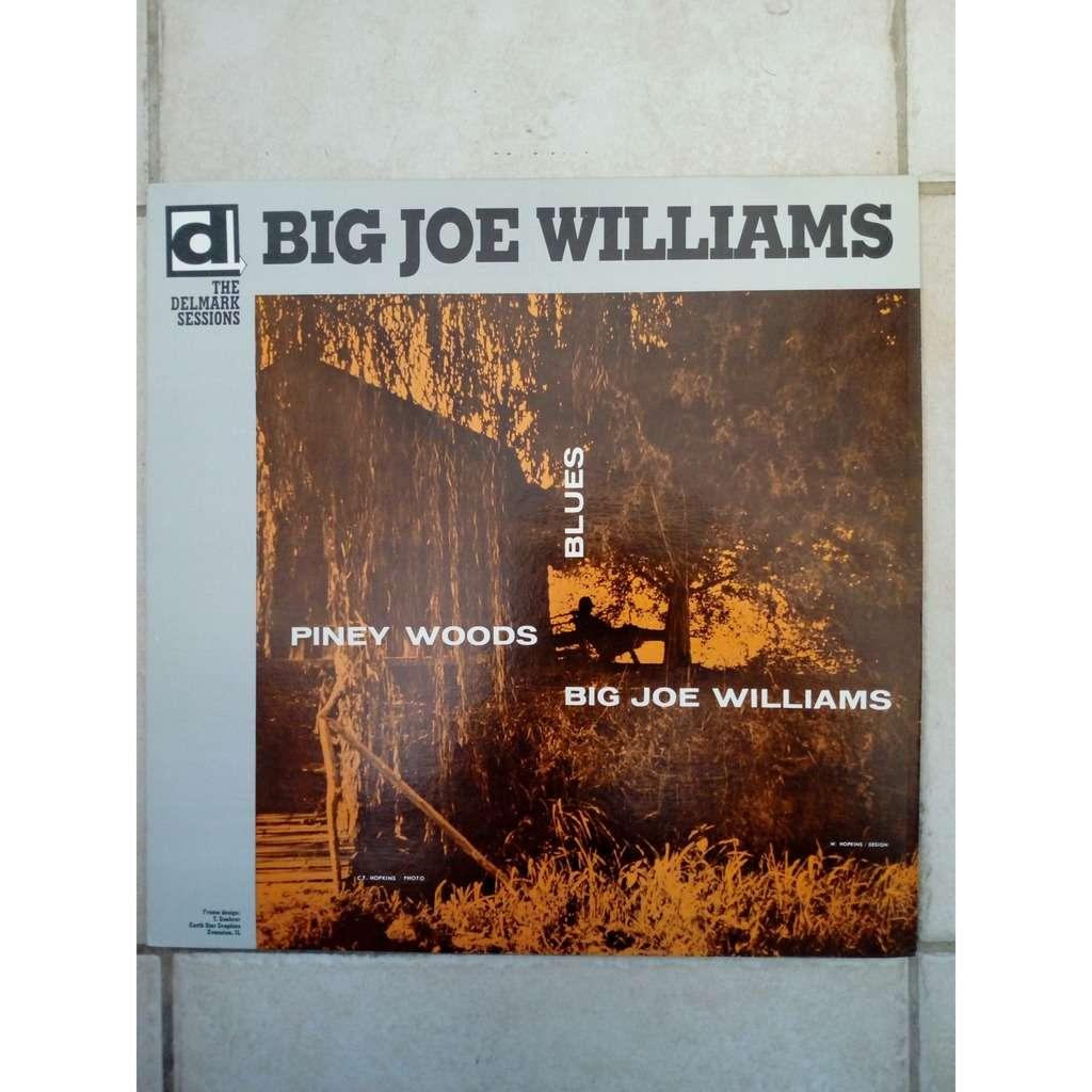 Big Joe Williams Piney Woods Blues
