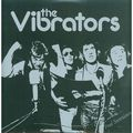THE VIBRATORS - Peel Sessions (lp) - 33T
