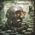 GOV'T MULE - Life Before Insanity (2xlp) - LP x 2