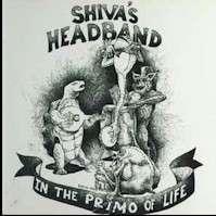 Shiva's Headband In the Primo of Life