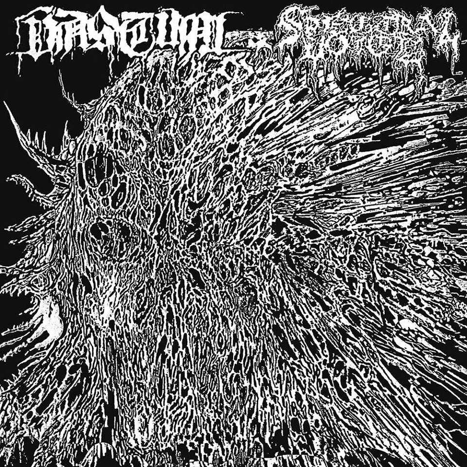 SPECTRAL VOICE / VASTUM split 7 EP. Black Vinyl