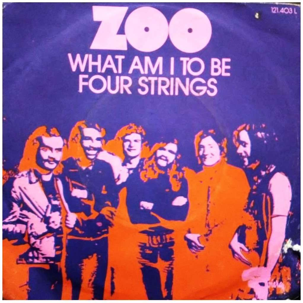 Zoo four strings - what am i to be
