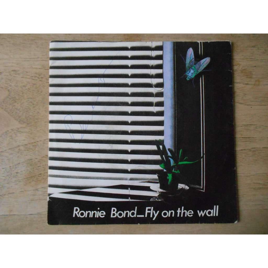 ronnie bond (ex troggs) fly on the wall - you can't expect miracles to happen overnight