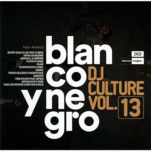 Various Blanco Y Negro DJ Culture Vol.13