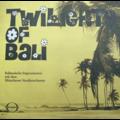 münchener studioorchester twilights of bali