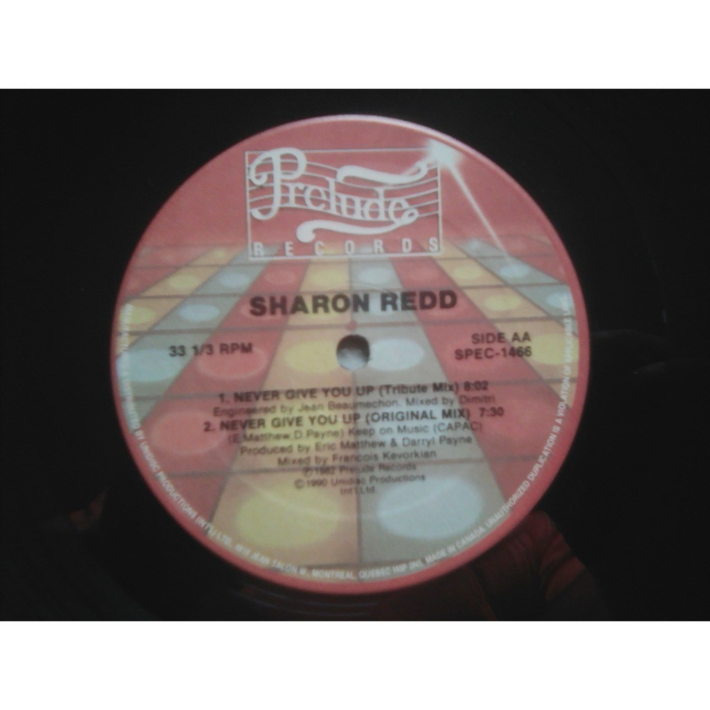 Sharon Redd - Never Give You Up Never Give You Up (Ultimate Mix).Never Give You Up (Tribute Mix)